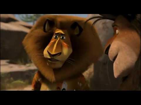 Madagascar Fight Contest