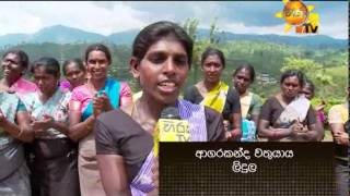 Hiru TV Top Light EP 341 | 2014-11-28