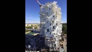 L'Arbre Blanc - Time lapse juin 2018