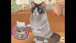 Игра мультик, симулятор кота, мой питомец, cat run #2, приключения котенка, симулятор кошки, игрушки