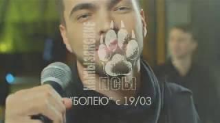Камызякские псы - Болею (Анонс клипа)