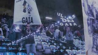 Panteras Negras Boavista F.C