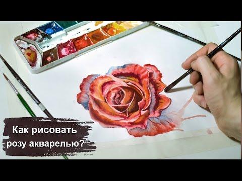 Уроки рисования карандашом для начинающих бесплатно