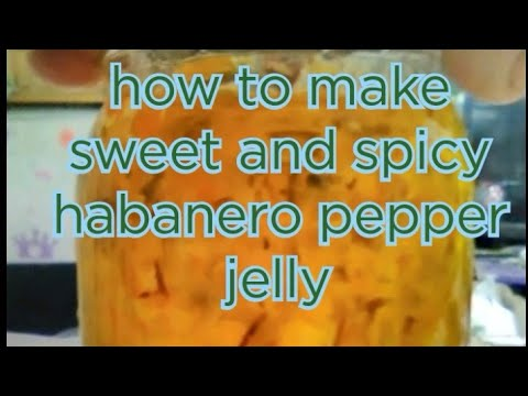 How to make habanero pepper jelly by Pioneer confections