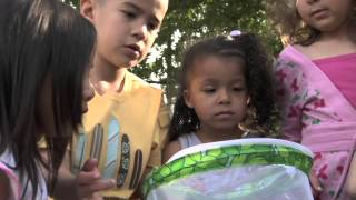 Links to Learning Preschool Curriculum