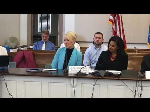 Delaware Health Care Delivery and Cost Advisory Group Meeting 4/16/2018 Video 1