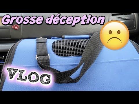 GROSSE DECEPTION A LA SPA -Vlog