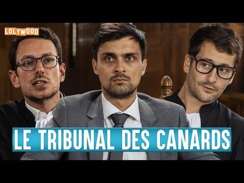 Le Tribunal des Canards