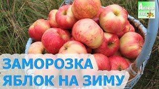 видео Замороженные яблоки