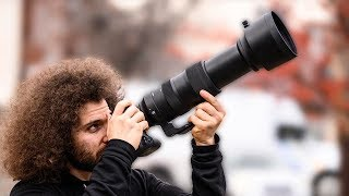 Sigma 60-600 Sport REVIEW: The BEST Wildlife / Sports lens for $2,000?
