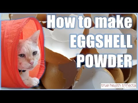 How to make Raw Cat Food WITHOUT Chicken Bone! - Eggshell Powder Recipe / Cat Lady Fitness