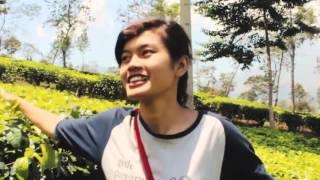 Pesona Java Promo - Beauty, Misty, And Mysterious of Wonosobo