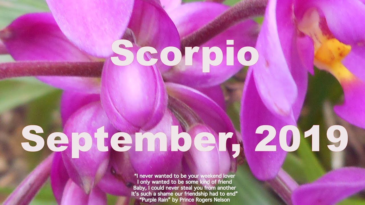 Your September Horoscope, Revealed