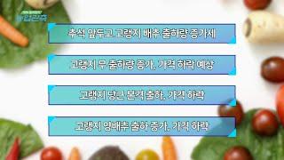 [영농길라잡이 농업관측] 9월 엽근채소