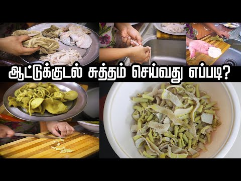 How to Clean Boti | Kudal Cleaning | How to Clean Goat Intestine - Food Awesome