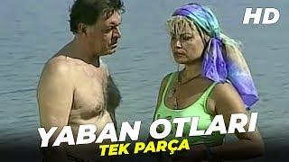 Yaban Otları | Meral Zeren Eski Türk Filmi Full İzle
