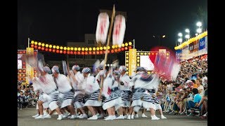 Sony | Alpha & G Master | Guide To Festival Photography | Awa Odori | Men's Dance