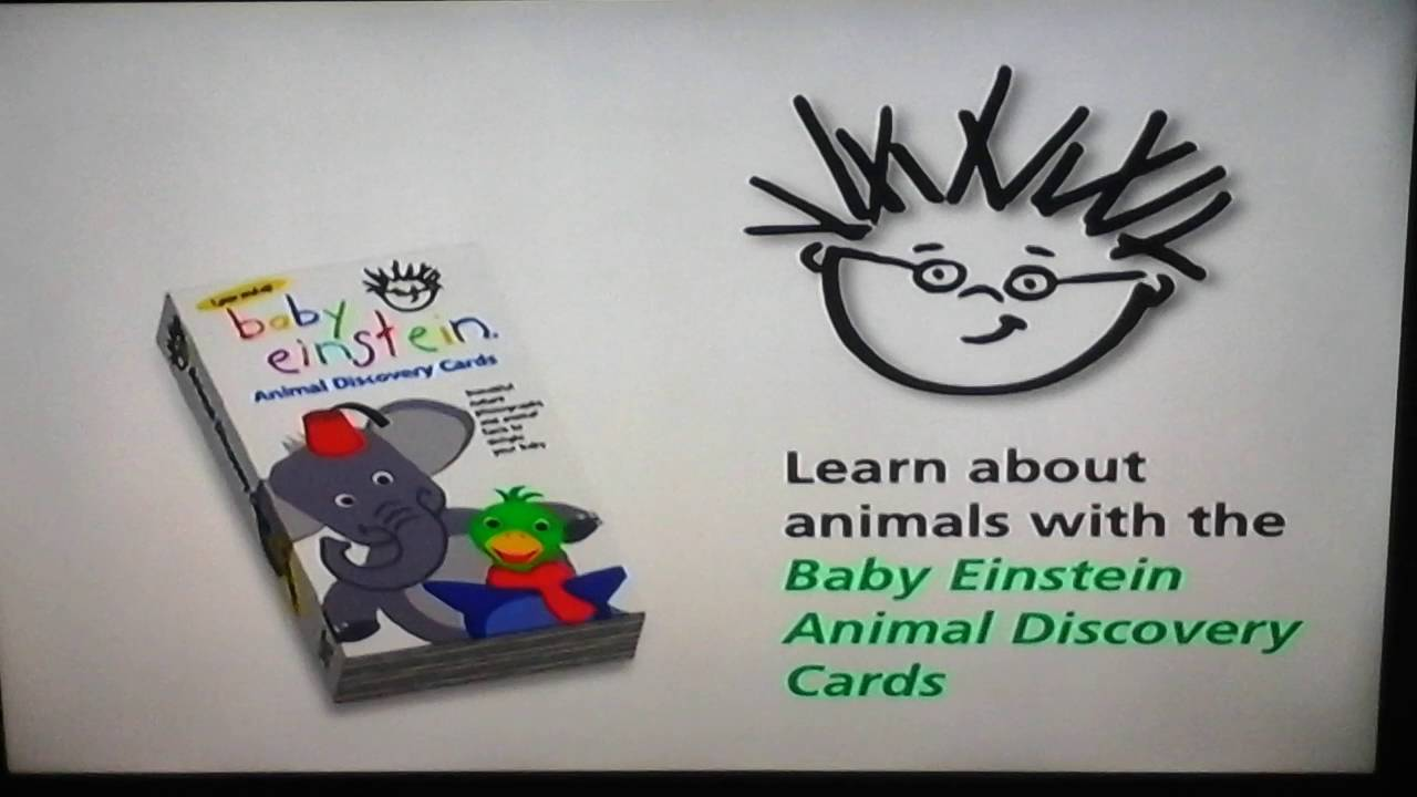World Animals 2003 Dvd Youtube