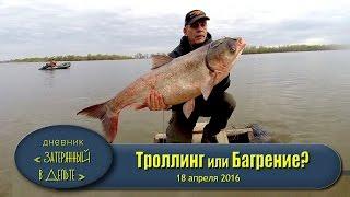 Рыбалка на Волге. Астраханская область Троллинг толстолобик