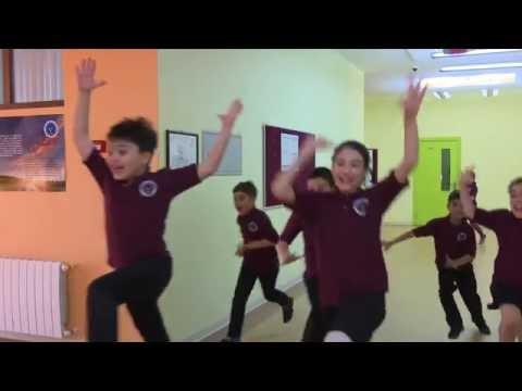 BSQ imtahanı- 4d - 2016   Avropa Azərbaycan Məktəbi