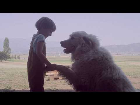 Carhartt Handmade Films   For The Love of Labor