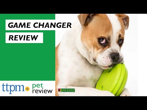The GameChanger Treat Dispenser for Dogs from Jersey Dog Co.