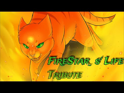 Firestar's life