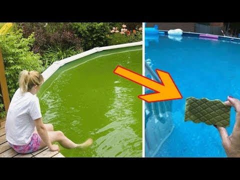 The Internet Has Gone Wild for This Grandma's Ingenious Pool Cleaning Hack