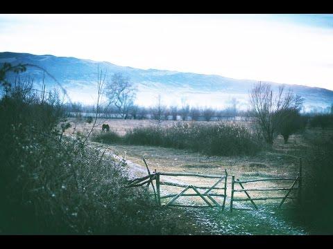 Stephan Bodzin / Singularity - Life and Death