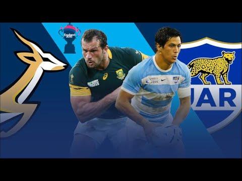 Springboks vs Argentina: Rugby Championship live scores!!!