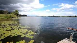 Нарова, рыбалка на фидер, охота на леща (1080p HD)