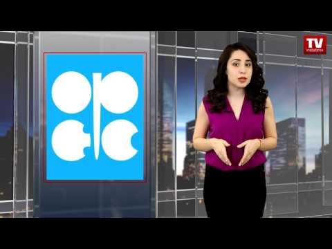 Oil rallies amid API report