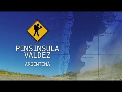 Península Valdés - Patagônia Argentina VIDEO