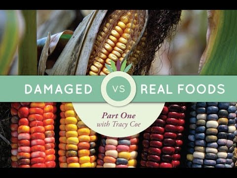 Live to 110 Podcast #24: Damaged Vs. Real Foods with Tracy Coe