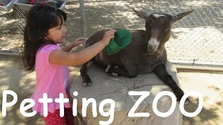 Petting ZOO Children