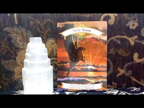 Daily Oracle Card Reading 23rd May Very Soon Unicorn ALL SIGNS unicorns Angels tarot