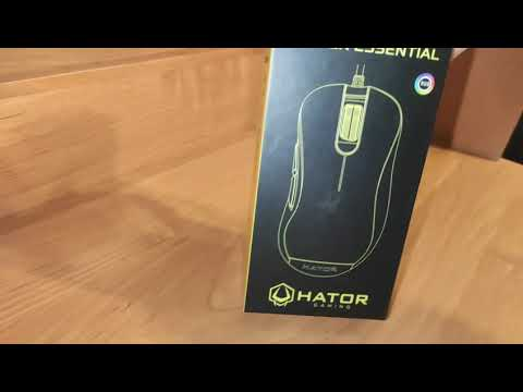 Мышь Hator Vortex Essential USB Black (HTM-311)