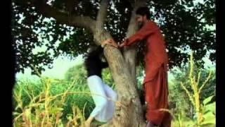 Rizwan Ali , wafa sindhi song