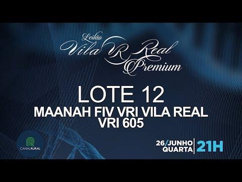 LOTE 12 (VRI 605)