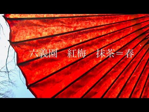 お抹茶を飲みに六義園/紅梅/抹茶/春/美容師休日Vlog/Nor-Su