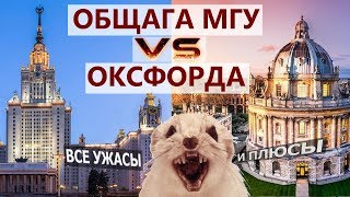 Общежитие МГУ vs Общежитие ОКСФОРДА. Вся правда про общагу ГЗ МГУ