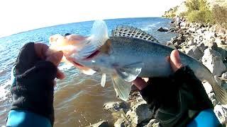 Риболовля на ВВ