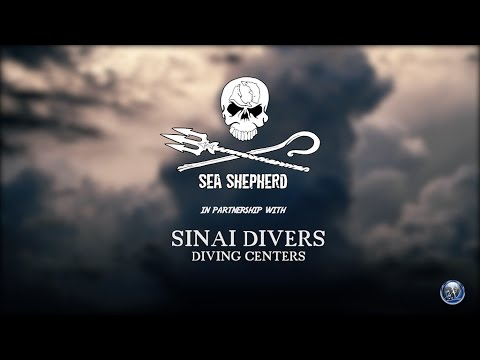 Sea Shepherd clean up Na
