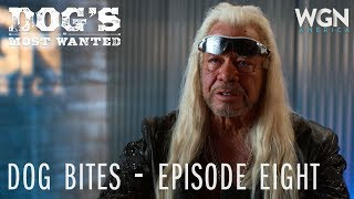 Dog's Most Wanted | Dog Bites: Episode Eight | WGN America