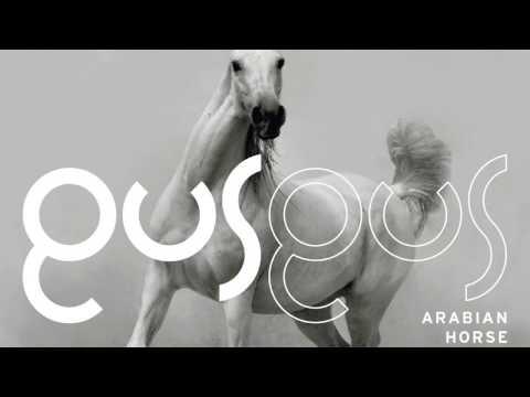 GusGus - Selfoss 'Arabian Horse' Album