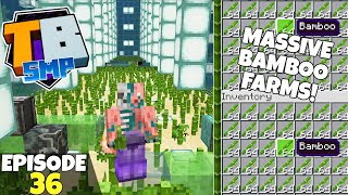 Truly Bedrock S2 Ep36! Two More HUGE Farms Complete! Bedrock Edition Survival Let's Play!