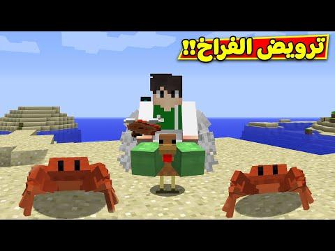 ماين كرافت : رمضان كرافت ترويض الفراخ | minecraft !! 🐣😍