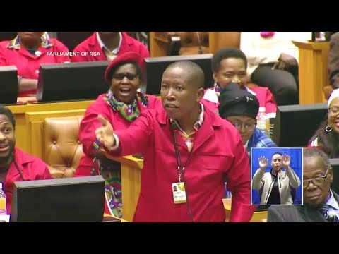 'Shut Up Julius Malema' - ANC MP In Parliament