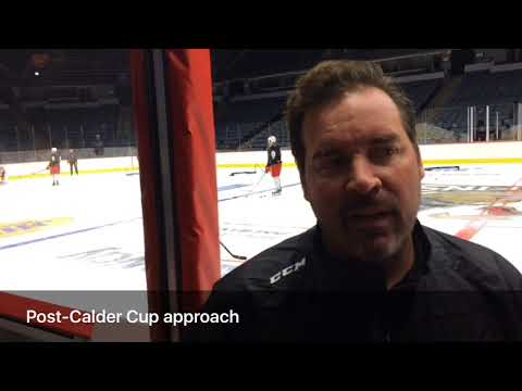 Griffins coach Todd Nelson assesses the team