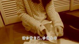[高登音樂台] 少女墮胎 原曲:雙雙 Lyrics MV